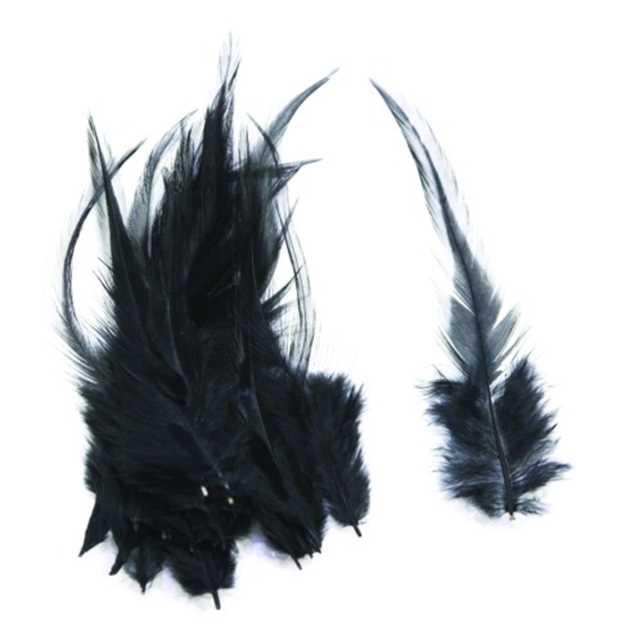 Bild på Lösa fjädrar från tuppsadel