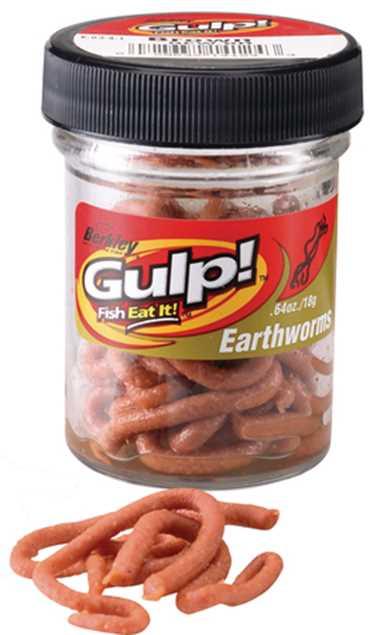 Bild på Gulp Earthworm