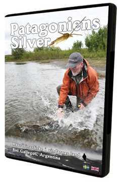Bild på Patagoniens Silver