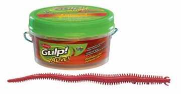 Bild på Gulp Alive Sandworm
