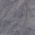 Bild på CDC Marc Petitjean (1 gram) Blue Dun