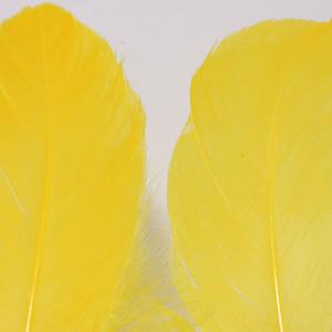 Bild på Gås Skulderfjäder / Goose Shoulder Yellow