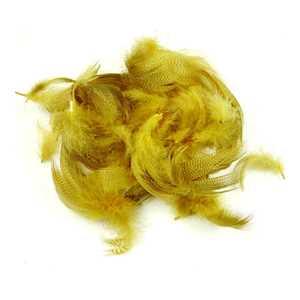 Bild på Grey Mallard Flank  Yellow