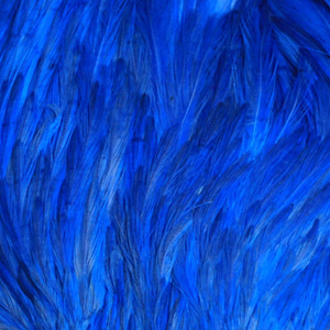 Bild på Indiska tuppnackar (A Grade) Teal Blue