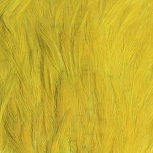 Bild på Indiska tuppnackar (A Grade) Olive