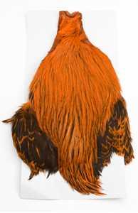 Bild på Keough Saltwater Tuppnackar Halvnacke Badger Orange
