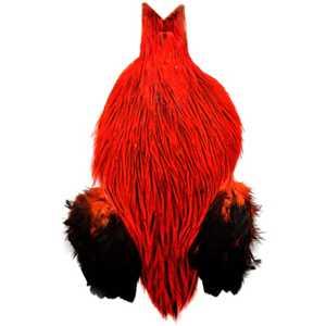 Bild på Keough Saltwater Tuppnackar Halvnacke Badger Red