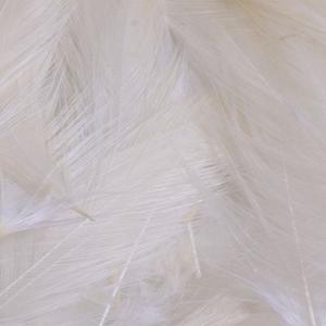 Bild på Lösa fjädrar från tuppsadel White