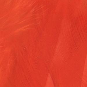 Bild på Lösa fjädrar från tuppsadel Orange