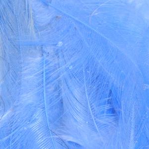 Bild på Lösa fjädrar från tuppsadel Blue