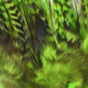Bild på Tupphackel Grizzly Chartreuse