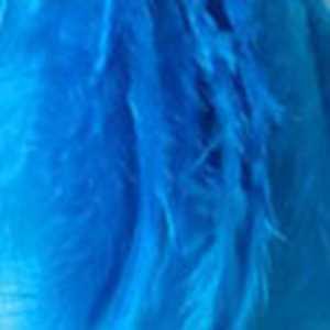 Bild på Tupphackel  Kingfisher Blue