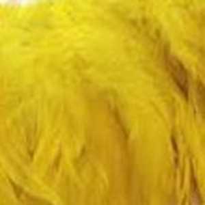 Bild på Tupphackel  Yellow