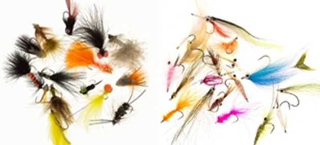 Bild för kategori Flugor