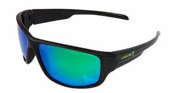 Bild på Gunki Team Polarised Sunglasses