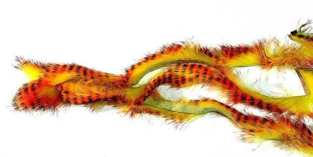 Bild på Kaninzonker Tiger Black Barred (3mm)