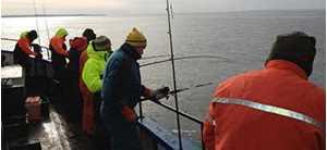 EL-GE Anders tips på fiske efter torsk i Öresund.