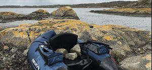 Flytring, kustvindar & gädda | Team Tim
