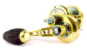 Bild på Maxel Transformer F50CH Gold