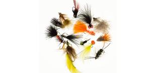 Bild för kategori Nybörjare Flugfiske