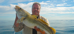 Minnen från Kattegatt | Fiskeproffessorn