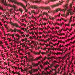 Bild på Erwing Rooster Saddle Grizzly/Pink