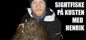 Allt du behöver veta om kikfiske på västkusten | Artikel | Team EL-GE Havsfiske