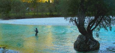 På visit i trolska Sočadalen   Artikel   Fiskeprofessorn