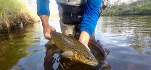 Rapport från Finnmark | Team Tim & Team Albin