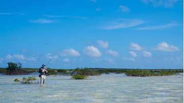 Bild på Bahamas 2019