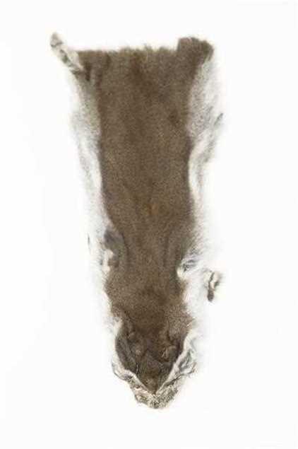 Bild på Pine Squirrel Skin | Natural