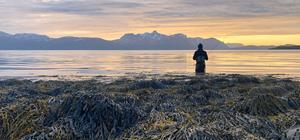 Sjøørret i nord | Team Tim & Albin