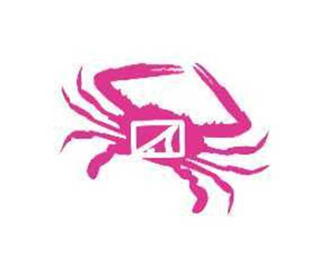 Bild på SWC Hot Pink Drifter Application Sticker