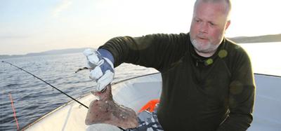 Tillbakablick från fiske i Skarnsundet - EL-GE Anders