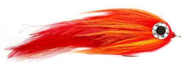 Bild på Flaming Lamborgini #6/0